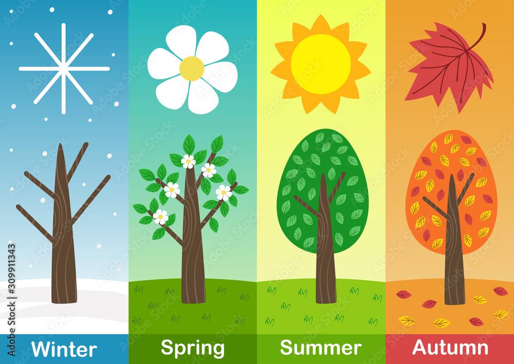 Fototapeta four seasons banners with  trees  - vector illustration, eps