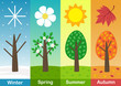 four seasons banners with  trees  - vector illustration, eps
