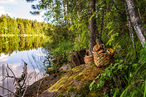Baskets of mushrooms on the forest lake shore Canvas Print