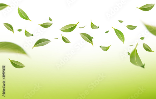 Stampa su Tela  Flying whirl green leaves in the air, Healthy products by organic natural ingred