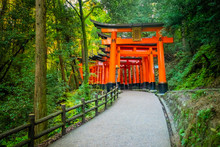 Japan. Kyoto. The Orange Gates...