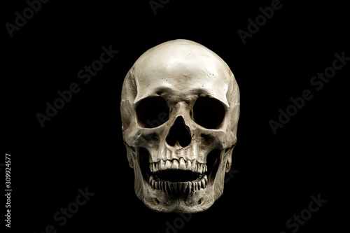 Photo Front view of a human skull with open mouth isolated on black background