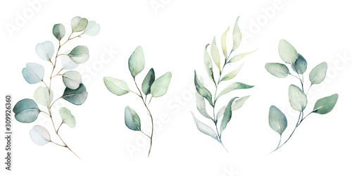 фотография Watercolor floral illustration set - green leaf branches collection, for wedding stationary, greetings, wallpapers, fashion, background