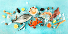 Fish And Seafood Panorama, A Flat Lay Top Shot On A Blue Background. Fresh Sea Bream. Shrimps, Crab, Sardines, Squid, Mussels, Scallops And Caviar
