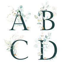 Dark Green Floral Alphabet Set - Letters A, B, C, D With Green Leaves, Botanic Branch Bouquet Composition. Unique Collection For Wedding Invites Decoration And Many Other Concept Ideas.