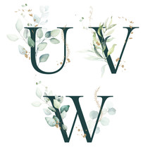 Dark Green Floral Alphabet Set - Letters U, V, W With Green Leaves, Botanic Branch Bouquet Composition. Unique Collection For Wedding Invites Decoration And Many Other Concept Ideas.