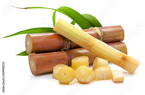 sugar cane isolated on white background Fototapeta