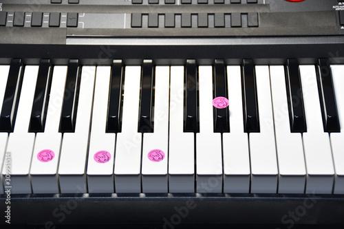 ピアノコード AmM7 Canvas Print
