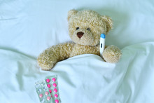 Teddy Bear With A Electronic T...