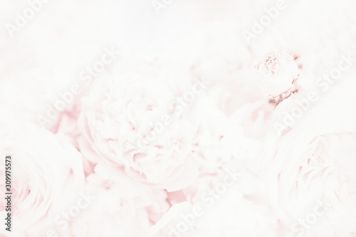 Cuadros en Lienzo  Light soft pale pink blurred background with floral pattern