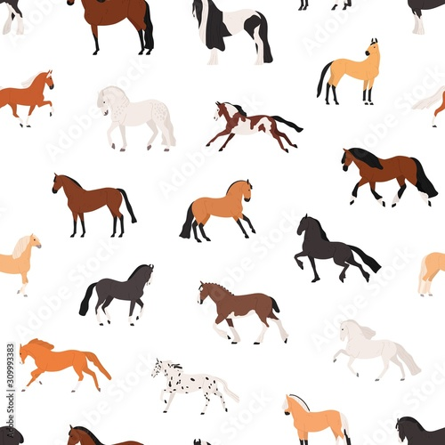 Fototapeta Horse breeding flat vector seamless pattern. Purebreed mares and stallions decorative texture. Thoroughbred racehorses on white background. Equine themed wallpaper, textile cartoon design. obraz
