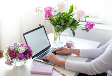 Female Hands Using Laptop. Female Office Desk Workspace Homeoffice Mock Up With Laptop, Pink Peony Flowers Bouquet, Smartphone, Pink Accessories And Pink Cup Of Coffee.