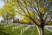 Arlington Cemetery Surrounded ...