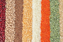 Different Types Of Legumes And...