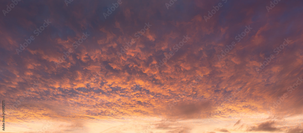 Fototapeta panorama of dramatic cloudscape at sunset with red clouds on sky