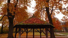 Wooden Gazebo In A Park Surrou...