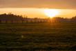 canvas print picture - Sonnenuntergang an einer Pferdekoppel