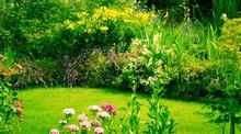 Gartenansicht Im Sommer