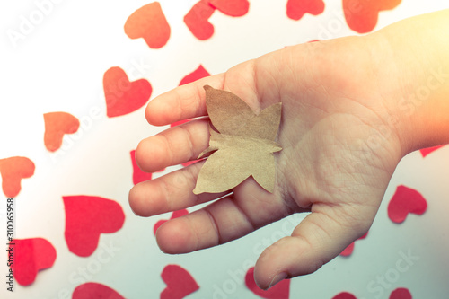 Photo Paper butterfly and paper hearts in hand