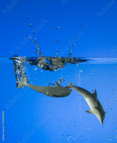 Two toys dolphins swim with bubbles and splashes of water behind a blue background Wall mural