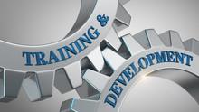 Training Development Concept. Words Training Development Written On Gear Wheels.