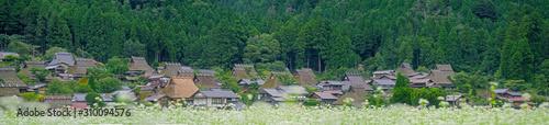 Fotografie, Obraz 京都 美山 かやぶきの里
