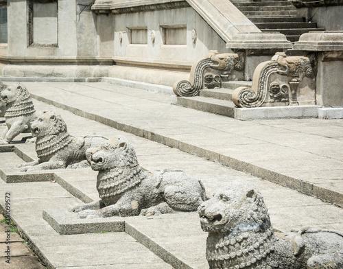 Photo lions statues in Columbo, Sri Lanka