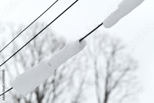 power line with snow after blizzard Wallpaper Mural