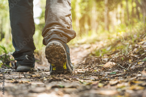 Obraz Close up leg and shoe boots hiking of young hipster man walking traveler in deep forest. - fototapety do salonu