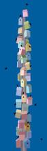 Bird Skyscraper