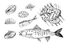 Fish Food, Salmon, Steak, File...