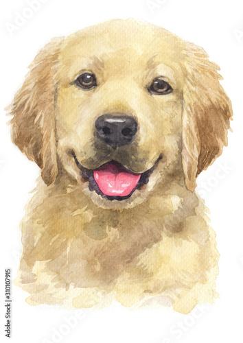 Fotografia Water colour painting of Golden Retriever [Puppy] 069