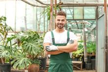 Handsome Male Gardener In Gree...
