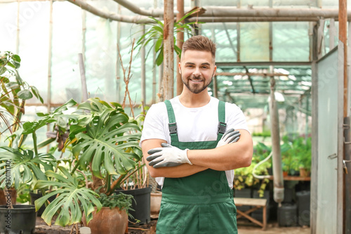 Photo Handsome male gardener in greenhouse