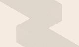 streszczenie sztuka linie tła. monochromatyczne paski - 310115309