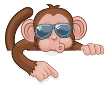 A Monkey Cool Cartoon Character Animal Wearing Sunglasses Peeking Over A Sign And Pointing.