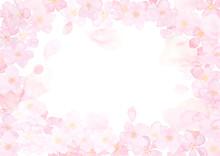 桜 ふんわり フレーム