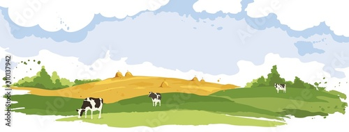 Obraz Abstract rural landscape with cows. Watercolor illustration, wheat fields and meadows	 - fototapety do salonu