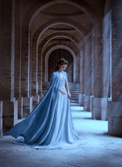 Sad Snow Queen walks in old castle. blue silk long raincoat train flying motion. Elven hairstyle cute face. Vintage fantasy art retro style. Frozen Fabulous woman photo shoot. sun magic shine rays