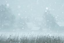 Snow Fog Landscape Snowfall / ...