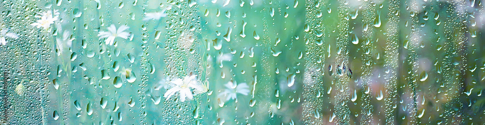 Fototapeta summer rain wet glass / abstract background landscape on a rainy day outside the window blurred background