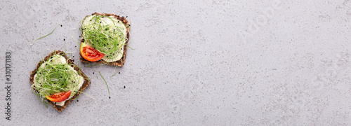Cuadros en Lienzo Vegan toasts of wholegrain bread with tofu, microgreens