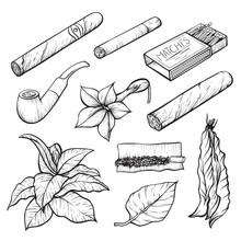 Cigars And Tobacco Monochrome ...