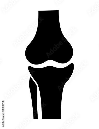 Obraz Knee joint icon. Knee bones vector. - fototapety do salonu