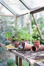 Overturned Pots In Greenhouse