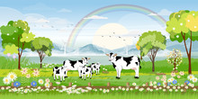 Rural Farm Landscape With Green Fields And Barn Animals Cow And Windmills Farm On Lakes With Blue Sky And Clouds, Vector Cartoon Spring Or Summer Landscape,Eco Village Or Organic Farming In Uk