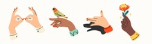 Tender Female Hands. Various Nationalities. Different Gestures. Hands With Bird And Flower. Shadow Puppet Barking Dog. Hand Drawn Colored Trendy Vector Illustration. All Elements Are Isolated
