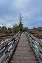 Wooden Walkway Over Wetlands O...