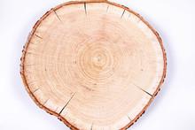Slice Of Fresh Oak Wood On A White Background