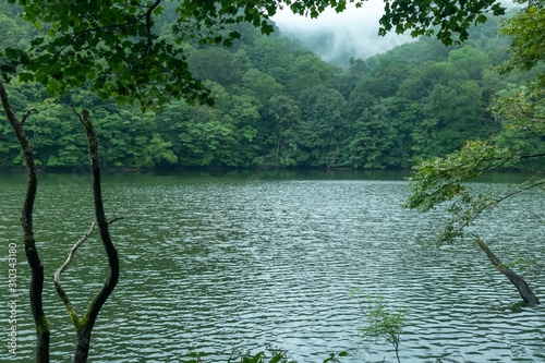 Lake Twelve (Juniko) in Shirakami Sanchi Mountains, Aomori Prefecture Canvas Print